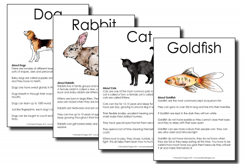 My Pet info cards